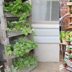 Creare un orto urbano con i pallet